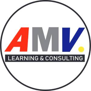 AMV Learning & Consulting, ACTIVIDADES EMPRESARIALES N.C.P., LIMA, Excel, in house, asesoramiento